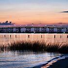 The Bridge to Biloxi by Brian Gaynor