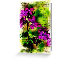 Luminous Lunaria - Money Plant $ Greeting Card