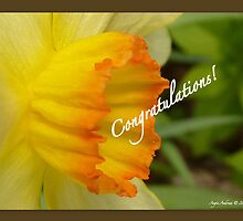 Congratulations! by Angele Ann  Andrews