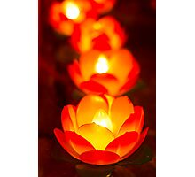 lotus light Photographic Print