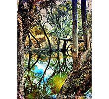 Dalienutopia - Bows Photographic Print