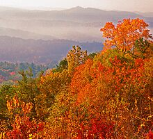 AUTUMN, FOOTHILLS PARKWAY by Chuck Wickham