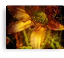 Digital Abstract Lily Canvas Print