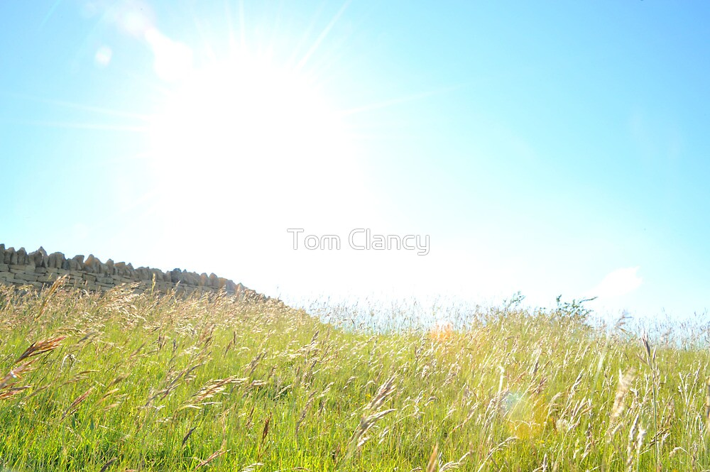 Summer by Tom Clancy