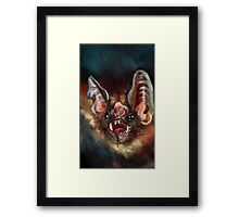Vampire Bat Framed Print