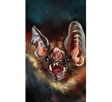 Vampire Bat Photographic Print