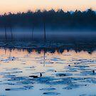 Morning fog by Sergey Martyushev