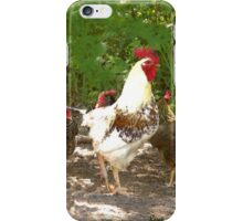 Rooster and Hens iPhone Case/Skin