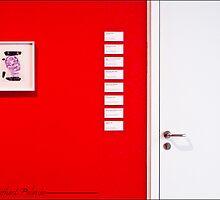 THE WHITE DOOR by EstherLPolonio