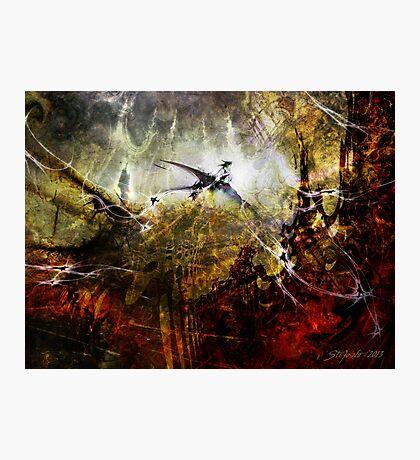 Dragon Realms Photographic Print