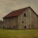 Ordinary Barn by Sheryl Gerhard