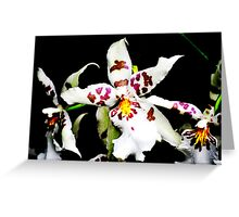 Precious Orchid  Greeting Card