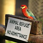 read the sign by birdpics