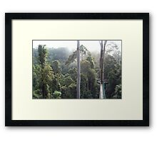 Danum Valley Canopy Walkway Tropical Borneo Rainforest  Framed Print