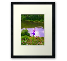 Stuck in the middle!  Framed Print