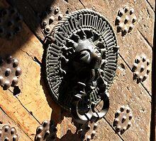 Lion Door Handle by kimhaz