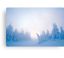 Twilight Snow Canvas Print