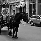 Montreal by SamTheCowdog