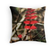 Red Leaves in Spring Throw Pillow