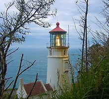 Heceta Head Lighthouse by MrJohnny68