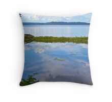Tolmie Lake Reflections Throw Pillow