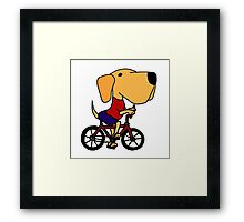 Funny Yellow Labrador Riding Bicycle Framed Print