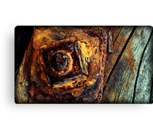 ages on the seaside Canvas Print