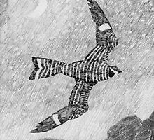 Nighthawk by pinkyjainpan