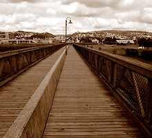I'll walk the line by myraj