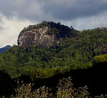 Escarpment near Nimbin by rogbar101