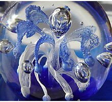 A paper weight only - or - alien fairy??? Photographic Print