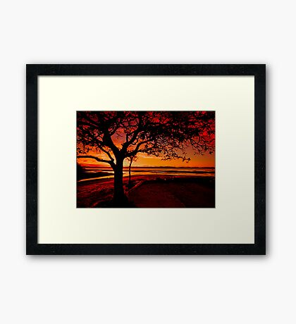 My branches support the sky Framed Print
