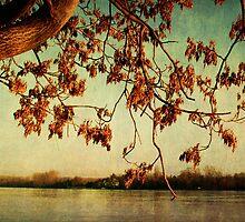Rheinromantik by Iris Lehnhardt