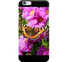 Vanessa atalanta - Red Admiral butterfly iPhone Case/Skin