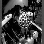 Harley 1200cc V Twin Chop by Terry Senior