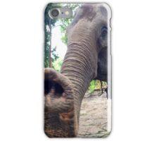 Elephant friend - Chiang Mai, Thailand   iPhone Case/Skin