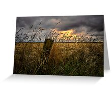 Willamette Valley Harvest Time Greeting Card