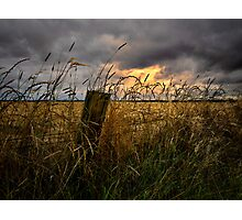 Willamette Valley Harvest Time Photographic Print