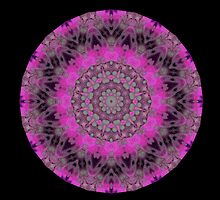 Tree trunk cosmic spin  by Michael Matthews