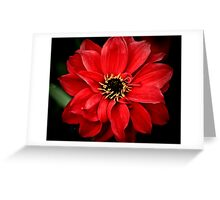 Crimson red Greeting Card