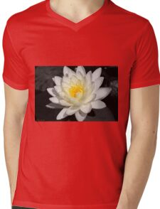 Water Lily 3 Mens V-Neck T-Shirt