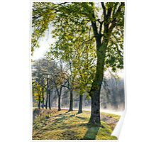 Misty Towpath Poster