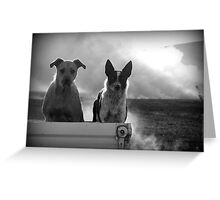 The Farm Dogs Greeting Card