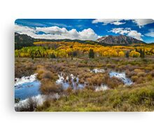 Rocky Mountain Kebler Autumn Rush Canvas Print