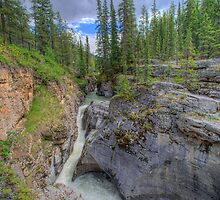 Maligne Canyon and River  by Myron Watamaniuk