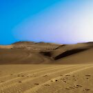 Walking on the Dunes by Ravi Chandra