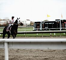 Suffolk Downs by fotoscontino