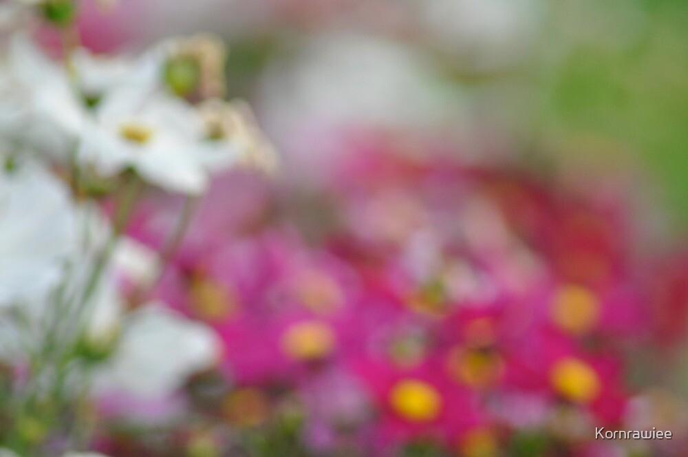 Someday I blur... by Kornrawiee