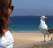 Demi and the seagull. by Annbjørg  Næss