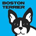 Boston Terrier by Jonathan Mitchell